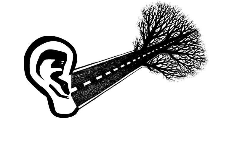 via auditiva - road